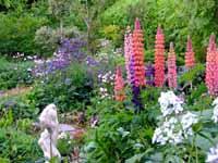 Pinsla Garden & Nursery