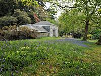 Antony Woodland Gardens