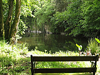 Bonython Estate Gardens
