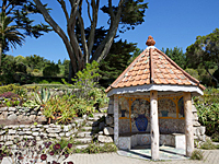 Tresco Abbey Garden